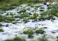 На Васильевском острове наступила зима