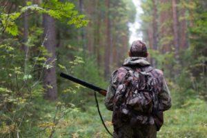 Как идти на дичь правильно: на каком расстоянии от населенного пункта можно охотиться