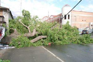 Последствия и жертвы урагана в Свердловской области 25.05.2020